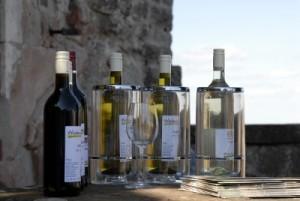 Weinverkostung in der Pfalz