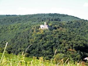 Weinprbe auf der Burg Landeck