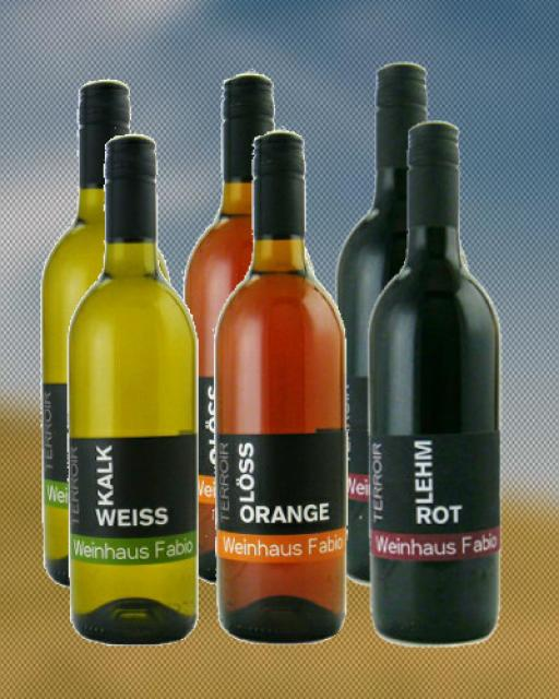 Terriorwein Weinpaket Bio aus Göcklingen an südlicher Weinstraße in der Pfalz