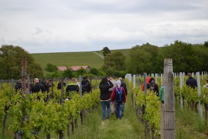 Betriebsausflug und Weinwanderung